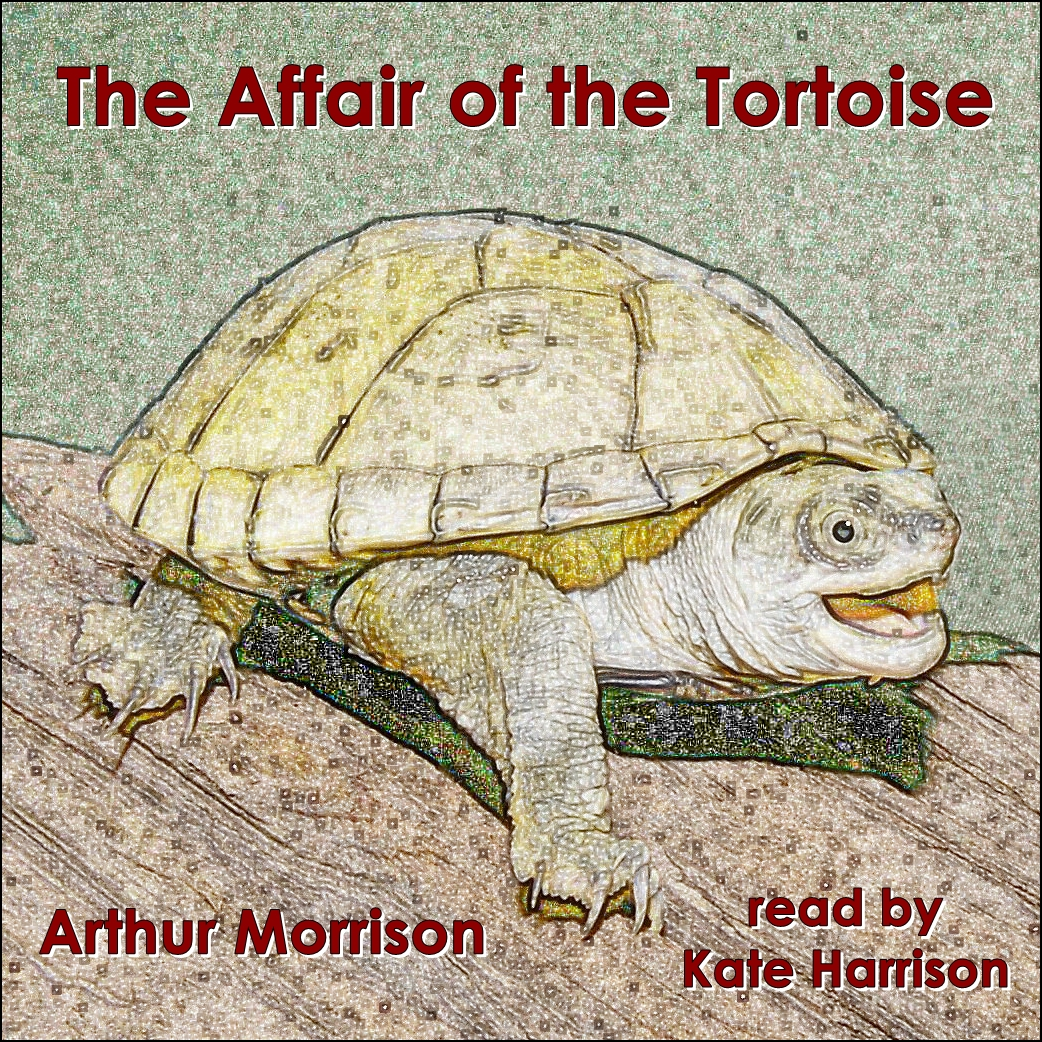 The Affair of the Tortoise [DD]