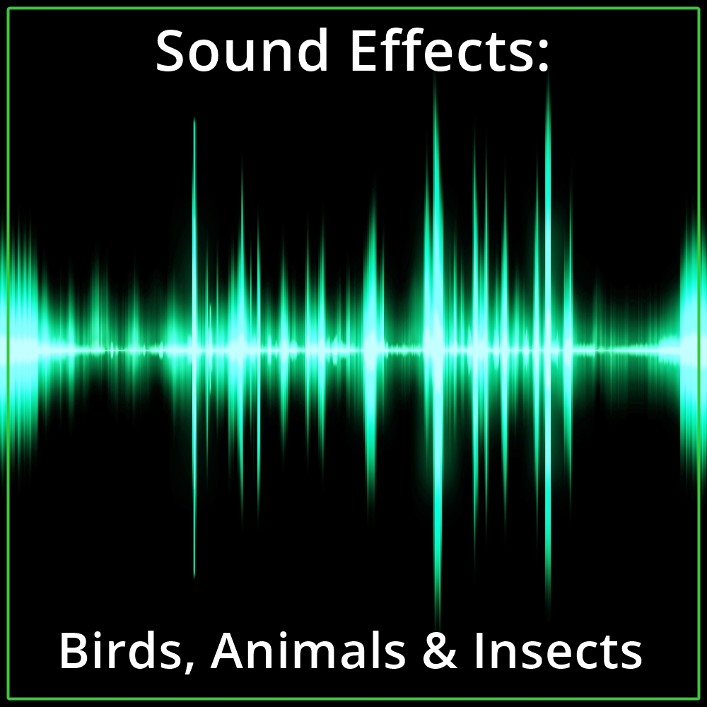 Sound Effects: Birds, Animals & Insects [DD]